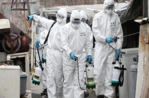 Article : Mauritanie: un deuxième cas de Coronavirus confirmé