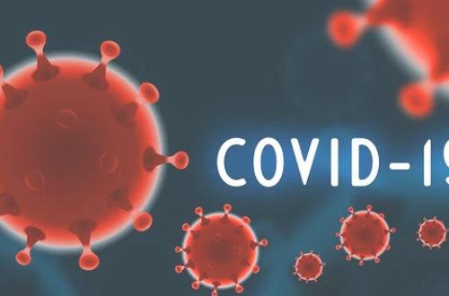Article : Corona virus: la Mauritanie compte désormais zéro cas positif