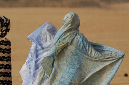 Article : Mauritanie: L'examen du projet de  loi relative à la lutte contre la violence à l'égard des femmes et des filles.